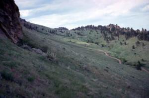 Mt. Sanitas trail area